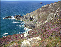 St Agnes head, granite and heather, for Pam.