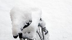 Mit Schnee gepolstert ...