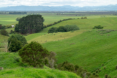 Neuseeland - Kaihere