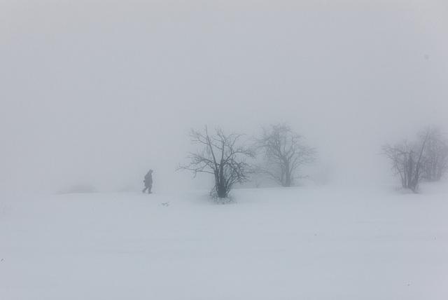 Spaziergang im Nebel -  20150101