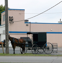 Amish carriage somewhere in NY state
