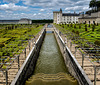 Château and Gardens of Villandry