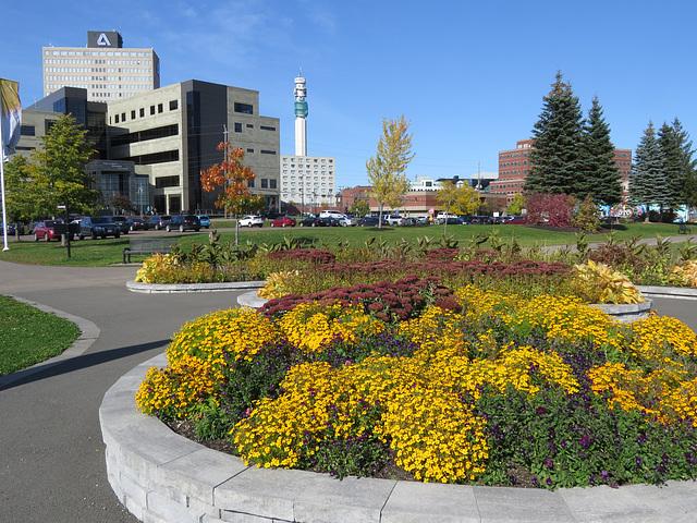 Flower garden in public park, Moncton, NB