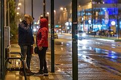 Waiting in the rain (07.12.2018)