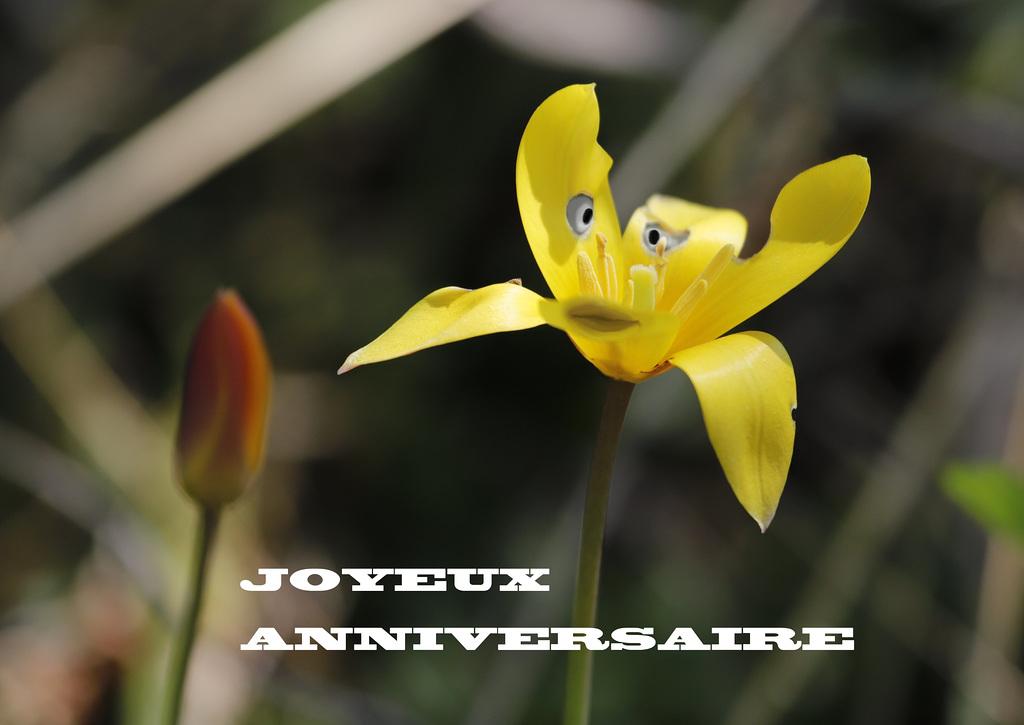 C'est l'anniversaire de Julien Rappaport ;-)