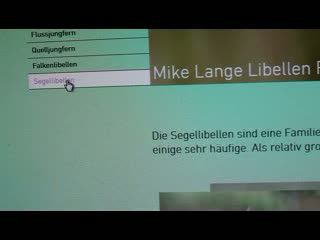 Webseite Mike Lange