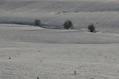 Unter dem Schneelaken