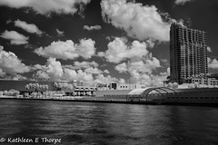 University of Tampa Infrared 003