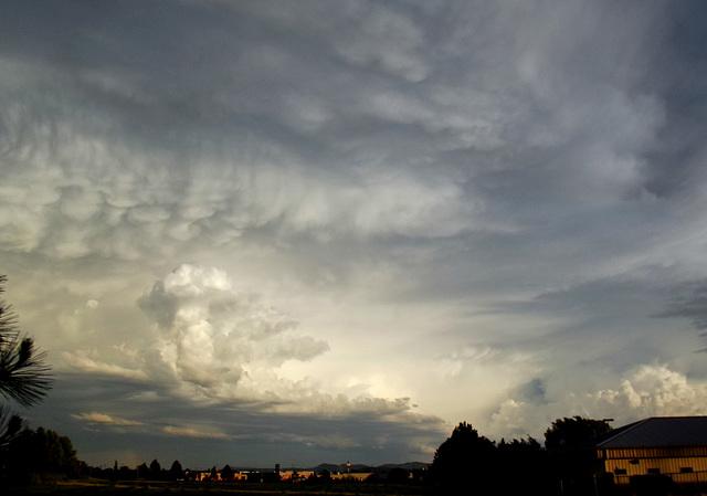 Cloud variety