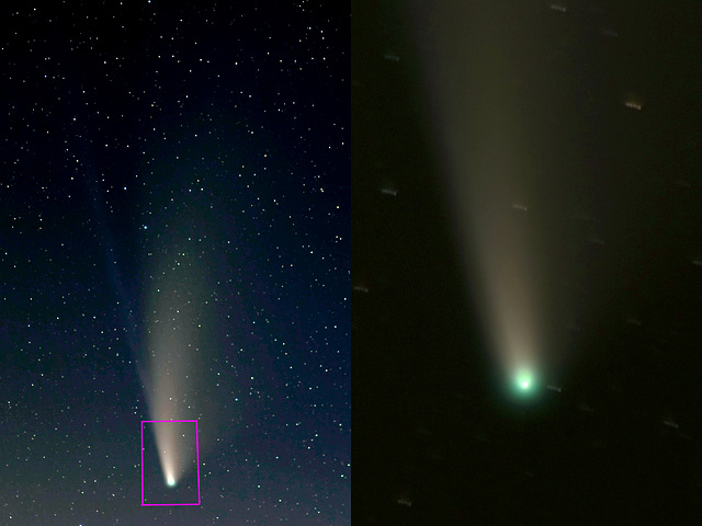 Comet Neowise (C/2020 F3) (view on black)
