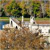 Avignon : il pezzo di ponte del XII secolo sul Rodano sopravvissuto nella alluvione del 1669 e usato come punto panoramico nella città vecchia