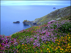 H. A. N. W. E.  everyone!  St Agnes Head and Man-and-His-Man