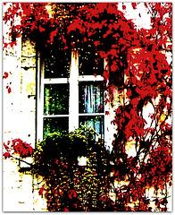 ...autumnally...