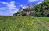 Glen Parva Leicestershire 15th May 2020