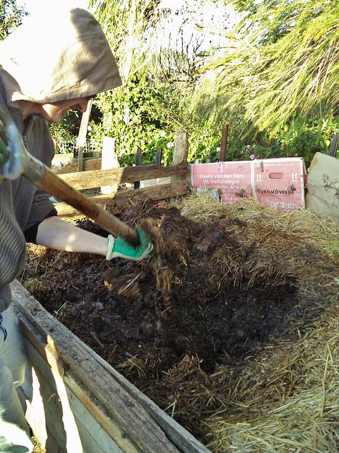 compost after 4 weeks