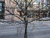 The official look of winter in downtown Cincinnati.
