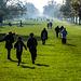Walking in Windsor Great Park