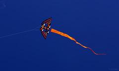 basingstoke kite festival