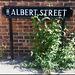Albert Street flora