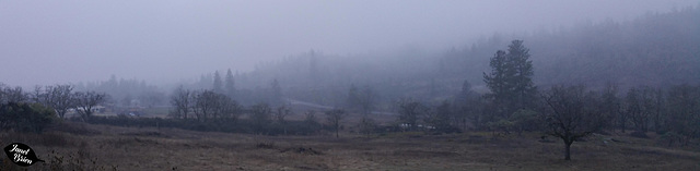 misty-day-pano-1.23.19