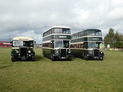 Preserved Todmorden JOC buses at Showbus - 29 Sep 2019 (P1040649)