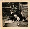 Eike ausgelagert nach Moorburg, 1955