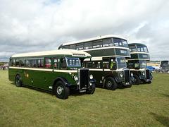 Preserved Todmorden JOC buses at Showbus - 29 Sep 2019 (P1040647)