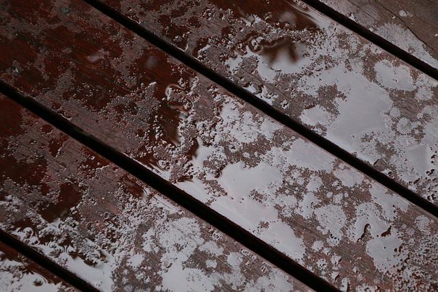 Rain on the porch