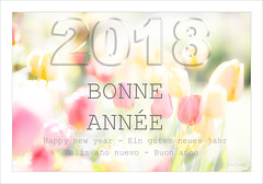 BONNE ANNEE............et BONNE SANTE...