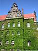 National-Museum Wrocław