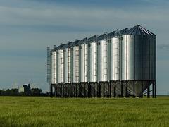Silos/grain terminal and old elevator, Herronton
