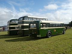 Preserved Todmorden JOC buses at Showbus - 29 Sep 2019 (P1040643