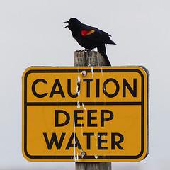 Caution - deep water