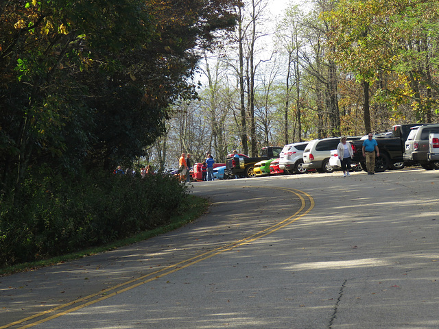 Rainbow of Classic Cars ..