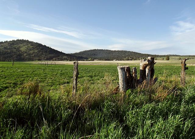 Pasture, hills