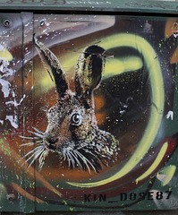 Upfest Hare