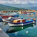 Alanya : barche da pesca - riflessi e colori