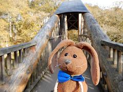 Bridge over the Bracklinn Falls