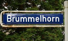 In Hamburg-Sasel