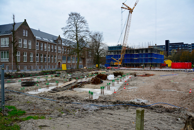 Building project Clusius