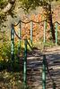 Altenahr - Rotweinwanderweg DSC00862