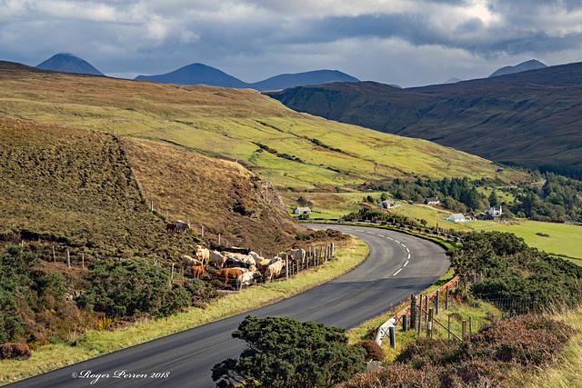 The Road to Dunvegan, HFF