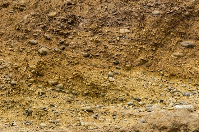 Benacre Cliffs cross-bedded gravels 1