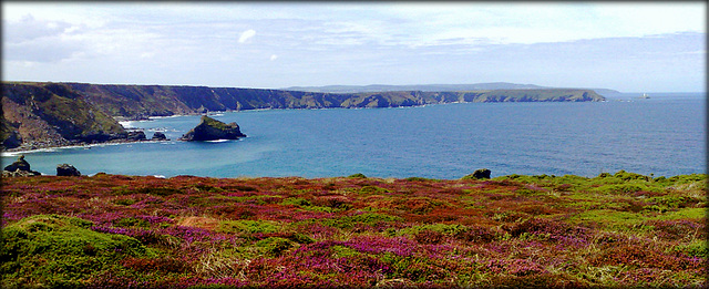 Carvannel Downs, above Porthcadjack Cove.