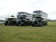 Preserved Todmorden JOC buses at Showbus - 29 Sep 2019 (P1040681)