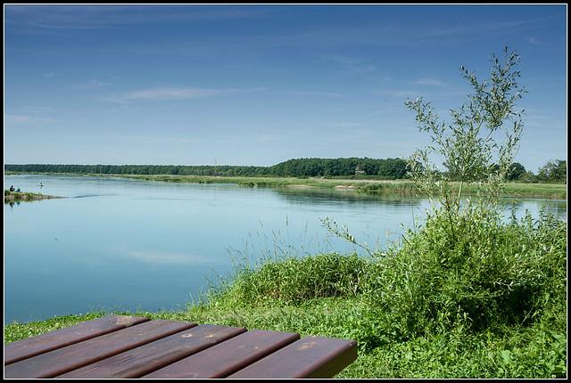 Die Oder bei Ratzdorf