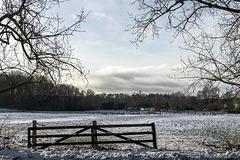 Norddeutscher Winter I