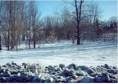 L'hiver en bleu….