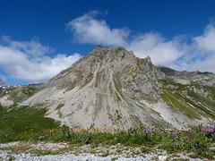 MAJESTUEUSE MONTAGNE/ Majestic mountain