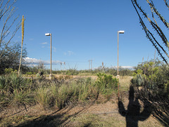Comedy lightpole twins in a desert.